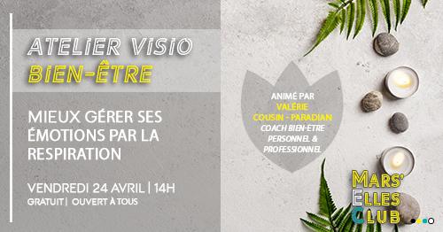 atelier-visio-bien-etre-business-marseille-mars-elles-club-2